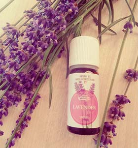 All The Secrets of Essential Oil of Lavender